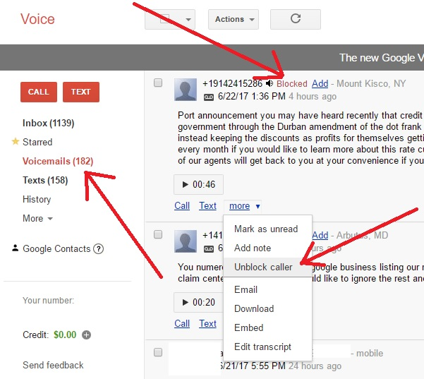 Unblock Caller on Google Voice | Notes
