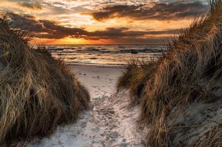 west-beach-4126760_640